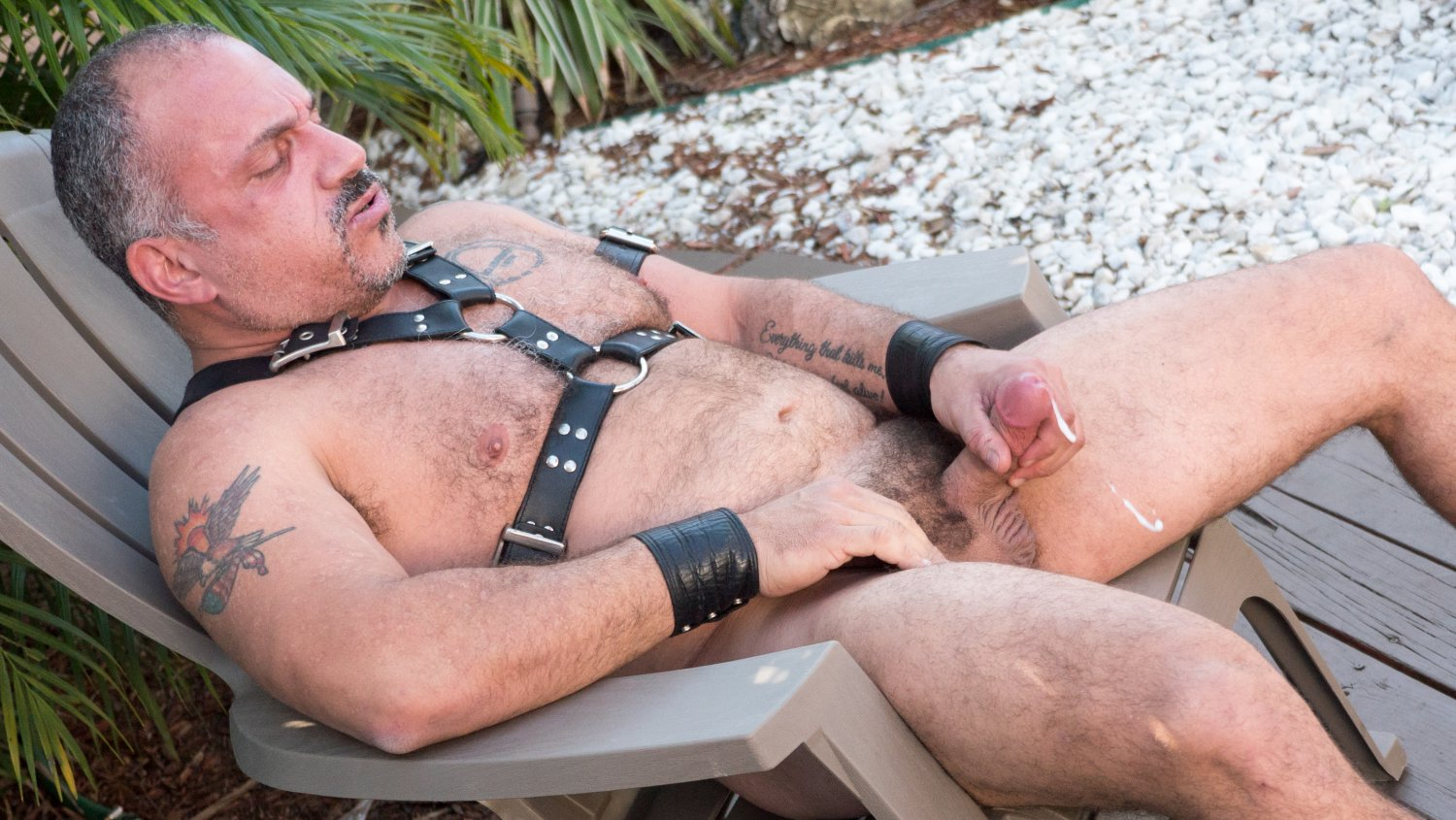 Bear Films Gay Bear Sex Jay Ricci - Dream Solo